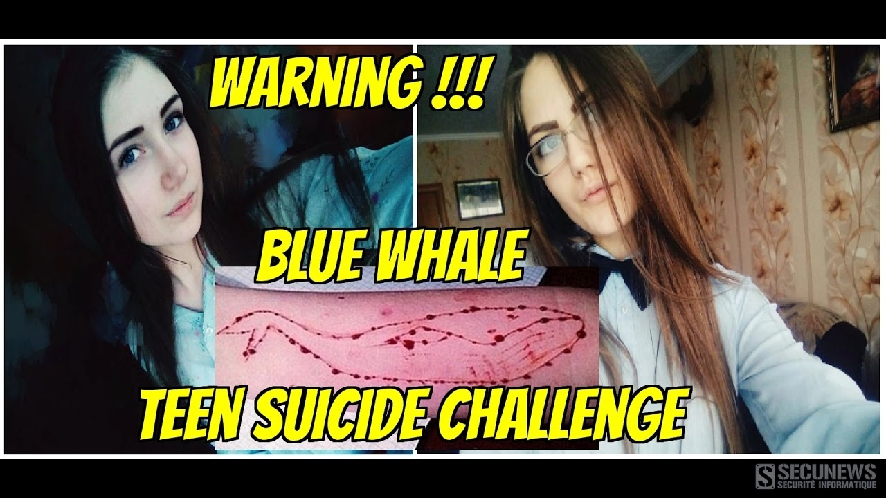 'Blue Whale', le challenge des réseaux sociaux qui pousse les adolescents au suicide